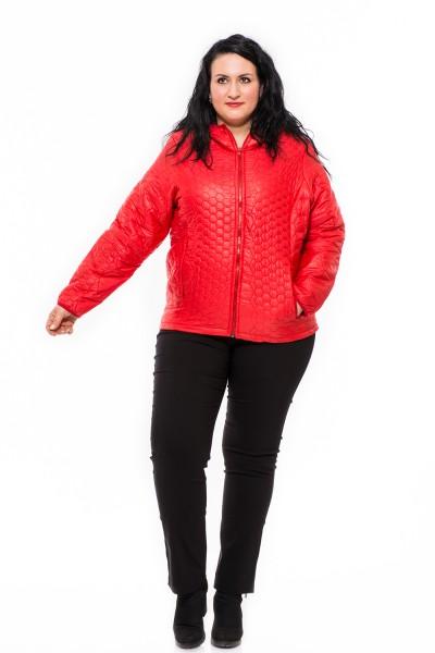 Kabát v nadrozmerných veľkostiach